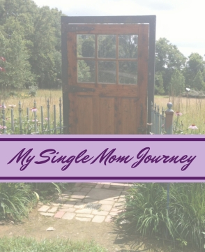 Single Mom Journey