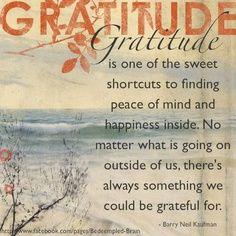 GratitudeAttitude